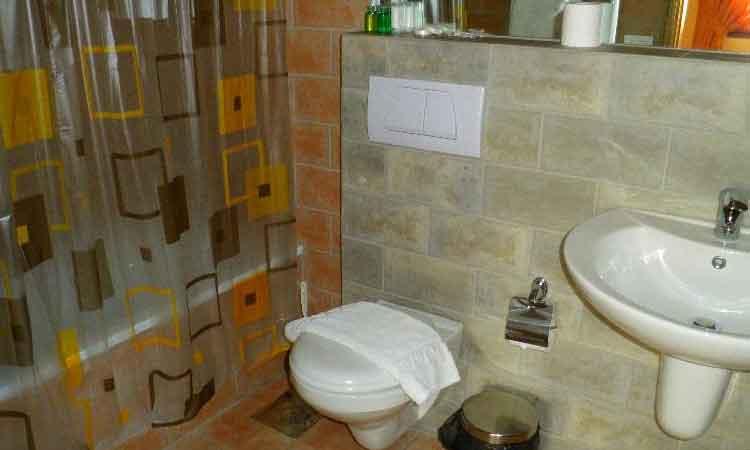 Auberge le Valais Faraya Bathroom