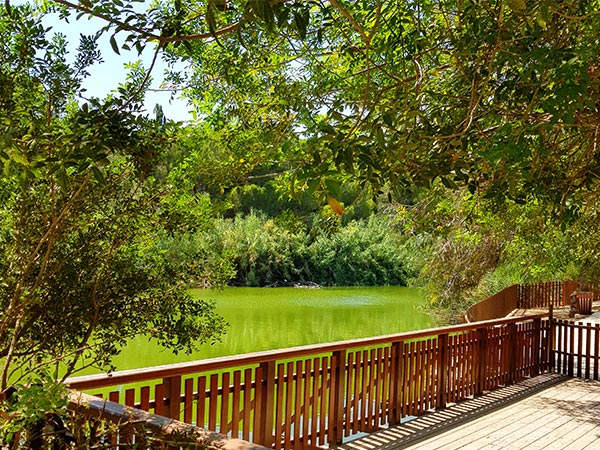 Athalassa National Forest Park, Cyprus